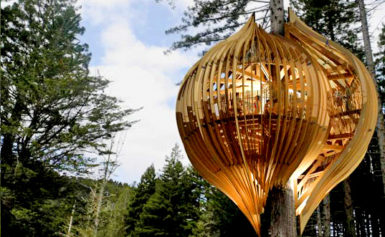 Go See: Whimsical Yellow Treehouse